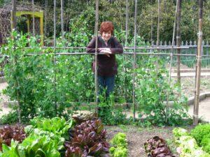 See Jane Explore Gardening
